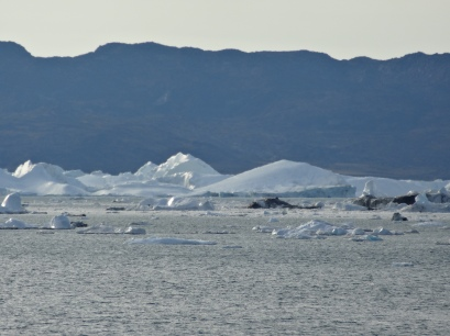 Freezing landsape at the coasts of Greenland